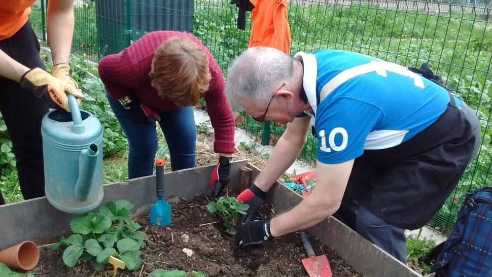 Quand les personnes handicap es cultivent leur jardin - Quand mettre du composte dans le jardin ...